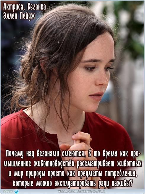 http://ipic.su/img/img7/fs/thumb_60f4c4293cc8796f64ee054ca0dbd22d.1507537414.jpg