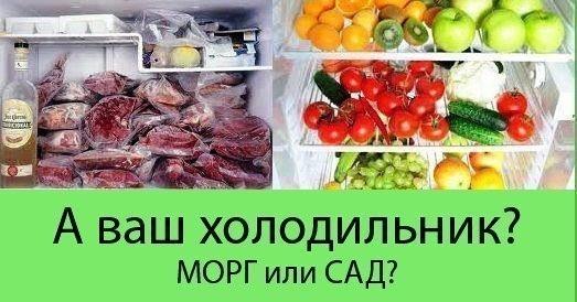 http://ipic.su/img/img7/fs/trup3.1482217714.jpg
