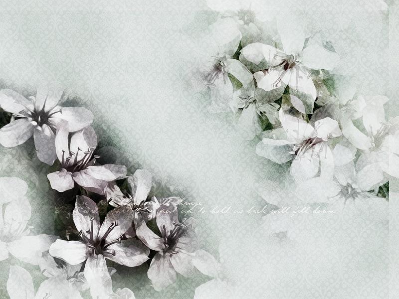 http://ipic.su/img/img7/fs/y_992deca1.1456302326.jpg