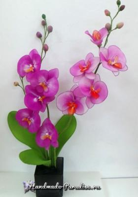 Орхидея Фаленопсис из капрона Orhideya-Falenopsis-iz-kaprona.1553746724