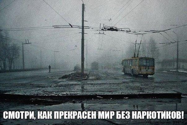 http://ipic.su/img/img7/fs/c5jRw_6WvP0.1359932829.jpg